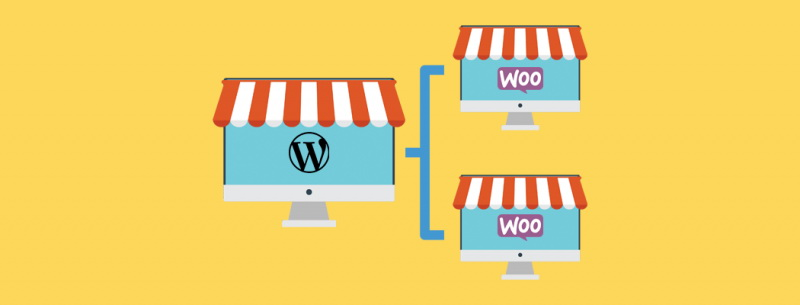 WordPress and WooCommerce Multisites: An Overview Main Picture