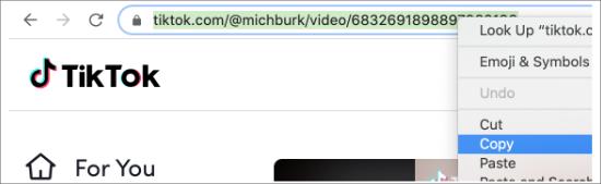 copy the URL of the TikTok video