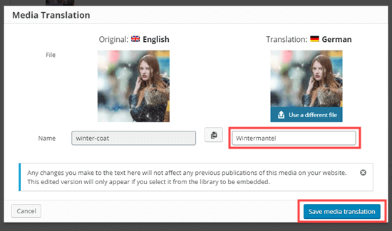 Media Translation page